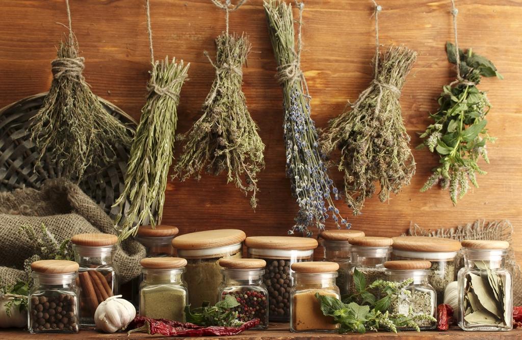Essiccazione e conservazione delle piante