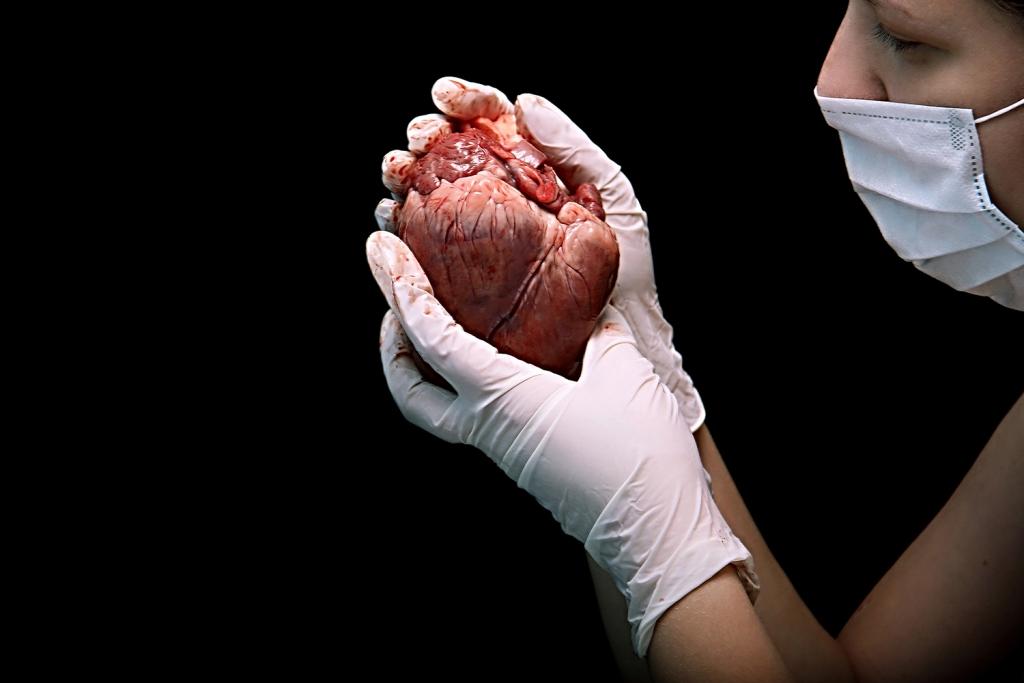 Rimedi per il cuore