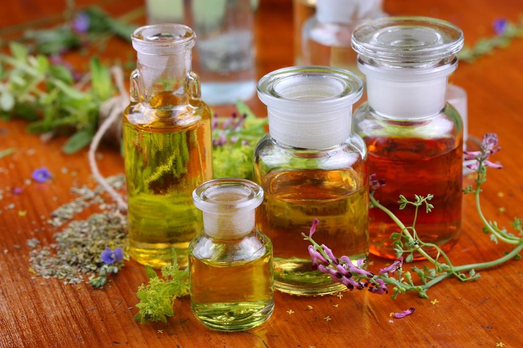 foto piante medicinali